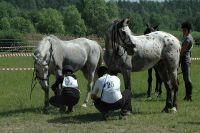 Czytaj więcej: Rajd konny w Małej Rusi