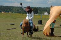 Czytaj więcej: Końskie Urocze Pokazy Amatorów Łaknących Atrakcji, czyli KUPAŁA