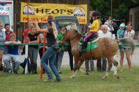 Czytaj więcej: Lenka na zawodach MPPK w Rzecznej