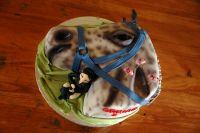Czytaj więcej: Piąte urodziny ORKIRO