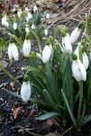 Czytaj więcej: ...i powitać wiosnę!